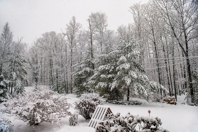 Snowing #1901