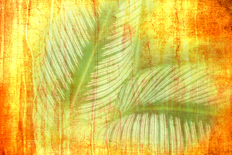 Green and Orange Abstract.jpg