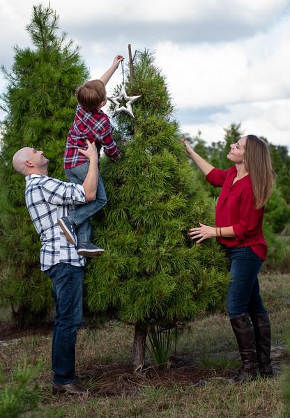 Hosaflook family tree.jpg