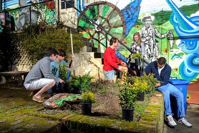 ENVS Courtyard Planting