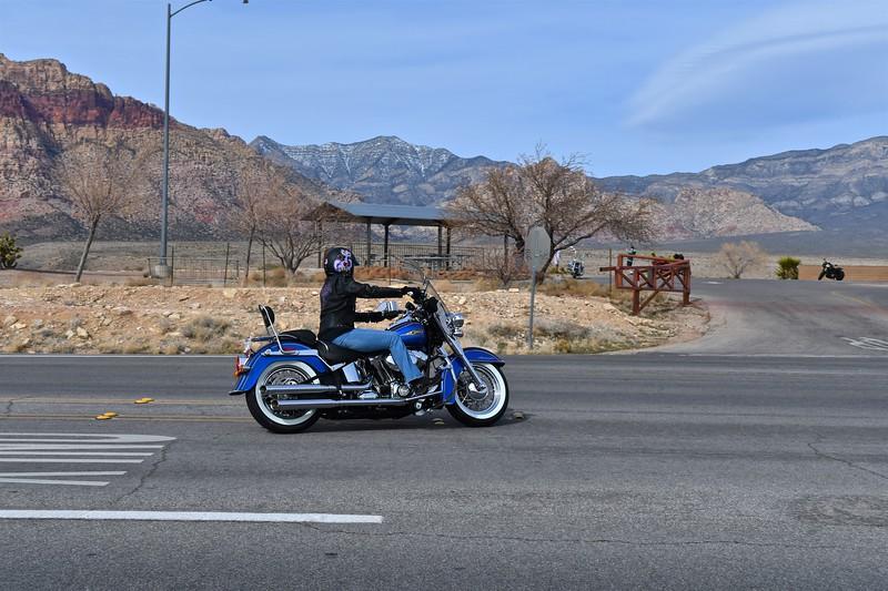Jamie's New Harley 008.jpg