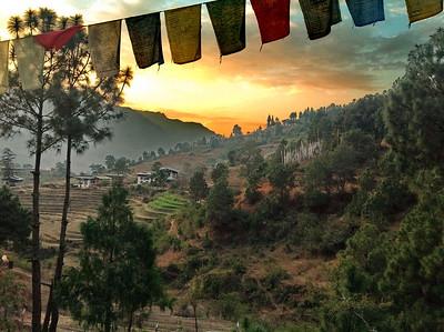 Бутан. Путешествие в Пунакху. Март 2016.