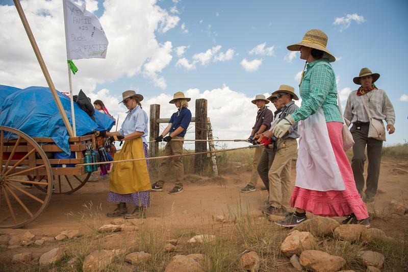 rodeo-2374.jpg