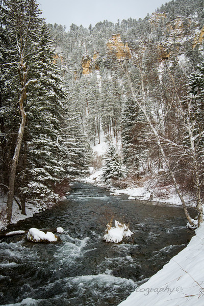 S_Spearfish Creek Winter_IMG_0587.jpg