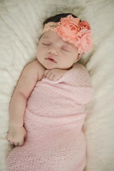 Haylee newborn session-16.jpg