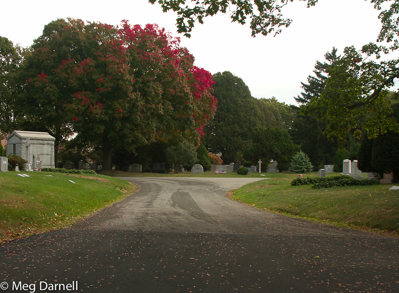 Greenwood Cemetray20131019-14.jpg