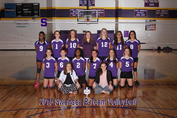 2015 Volleyball  b-team