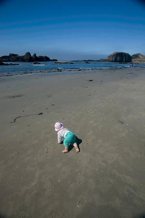 West Coast 2010