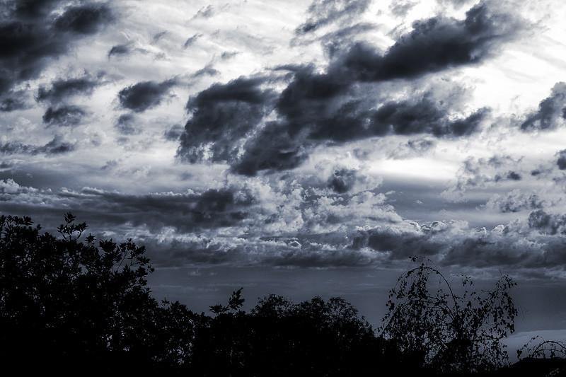 October 14 - Forlorn.jpg