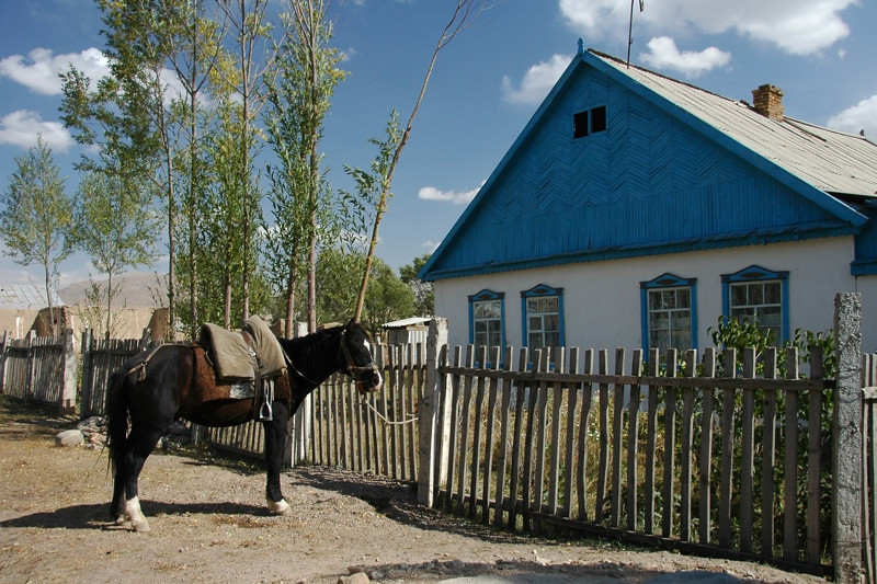 Horse Tied Up at Kyrgyz House - Kyzart, Kyrgyzstan