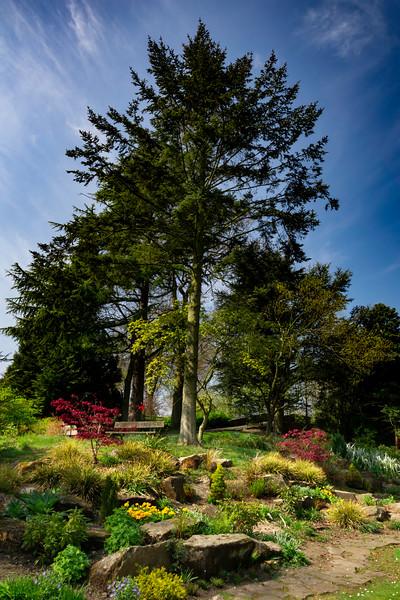 dunfermline garden.jpg