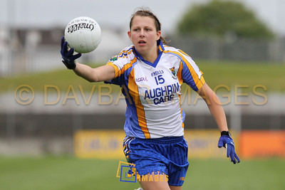 Wicklow v Wexford 2011