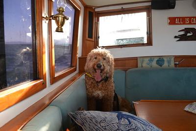 Berkeley to Locke Boat Trip