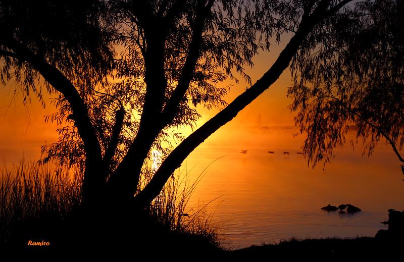 Sunrise at Braunig Lake IMG_7997.jpg