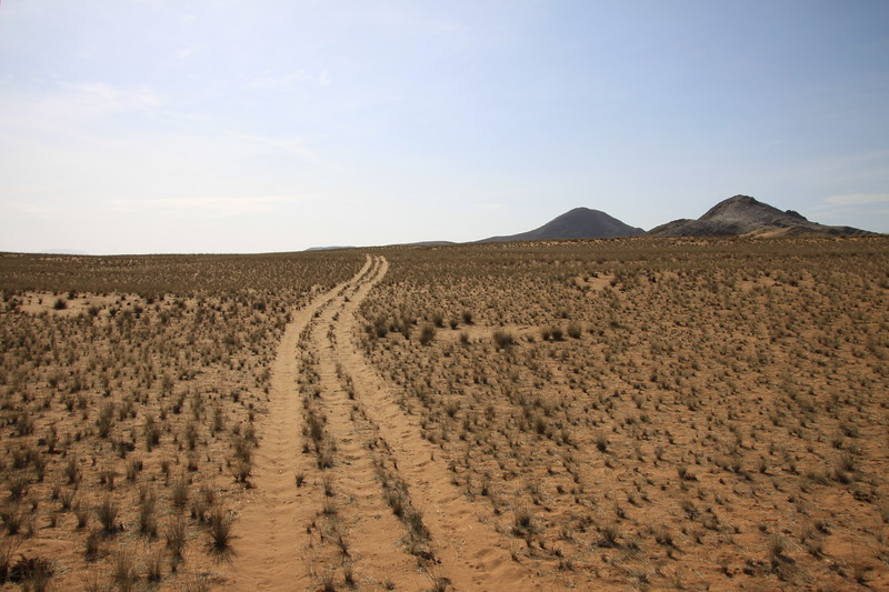 Typical track in the Namib Desert