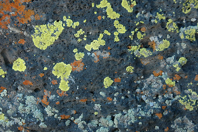 Lava Beds National Monument & Medicine Lake-June 2006