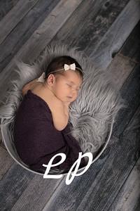 Morgan Newborn