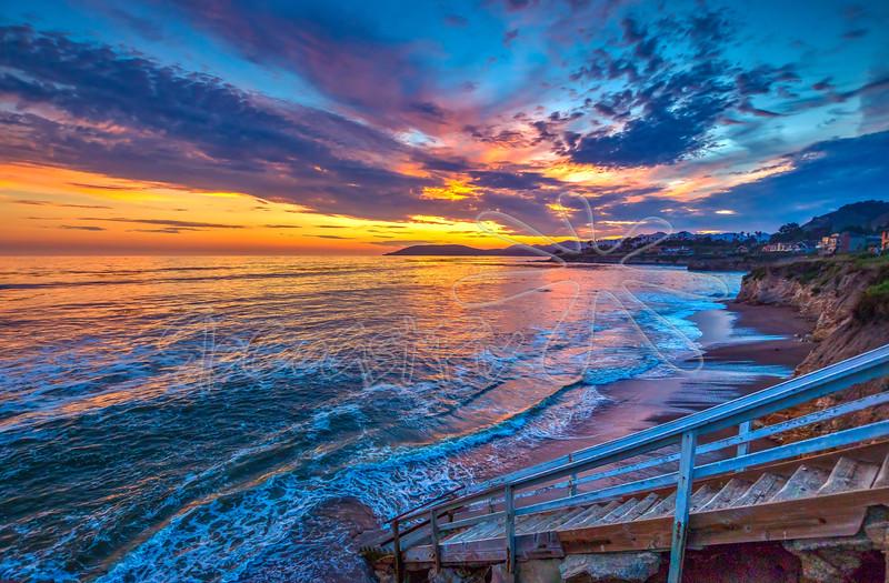 Shell Beach_75