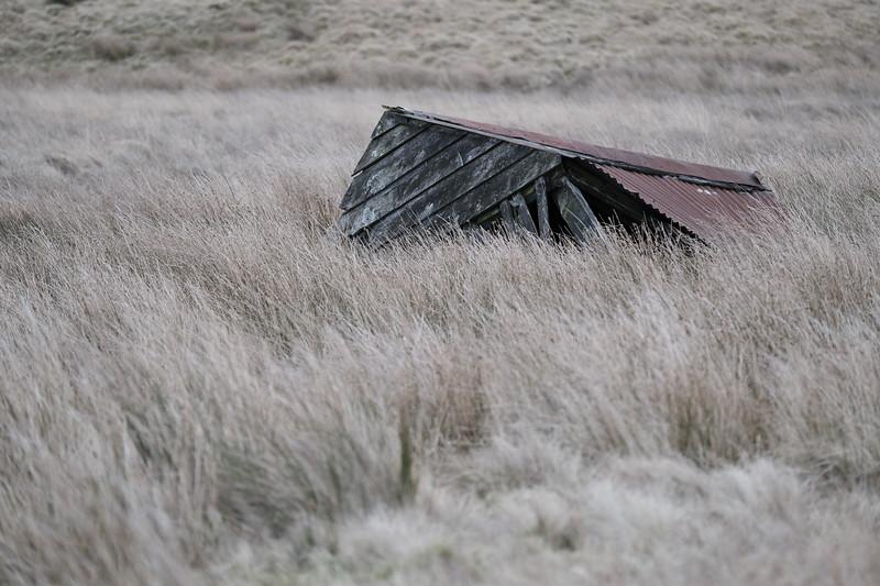 HAWICK, SCOTLAND - January 12:       (Photo by Rob Gray / Freelance)