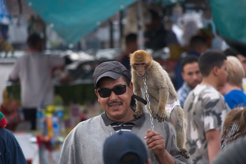 morocco 2018 copy40.jpg