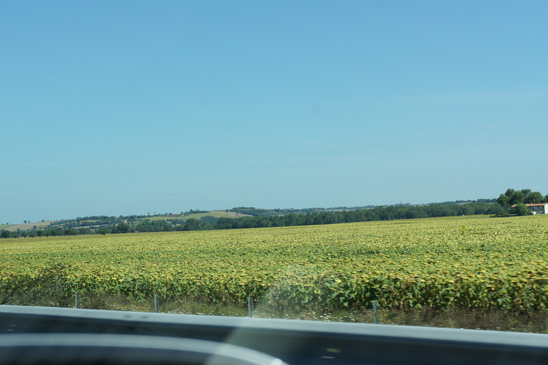 2011-08-516-Испания-Франция-Тулуза.JPG