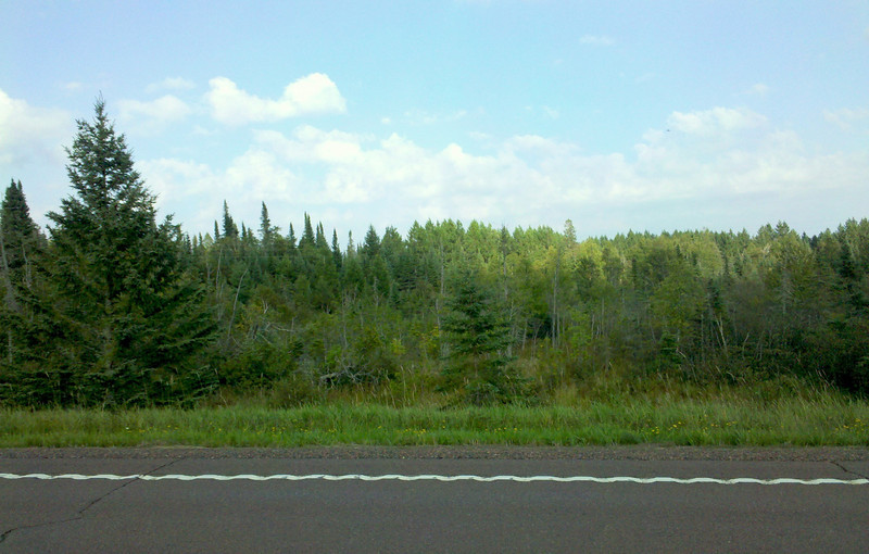 Off Highway 1 just out of Superior National Forest. This is where I saw the moose.