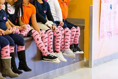 Dr. Sue Shook Pink Socks