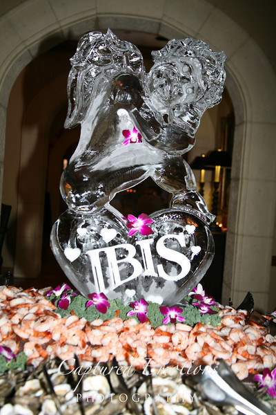 2011 Ibis V-day Ball