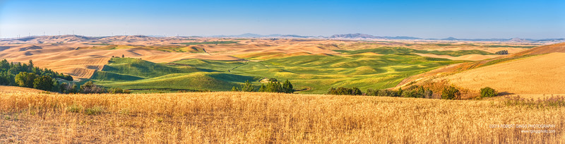 Palouse Day2-1381-Pano.jpg