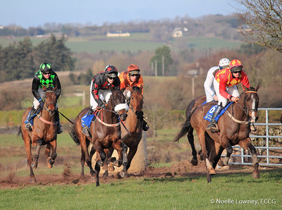 Carrigtwohill Point to Point - 01/02/15