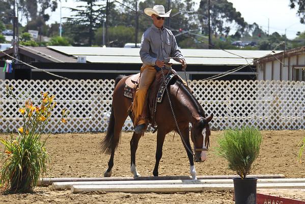Arabian Western Trail - Jr Horse
