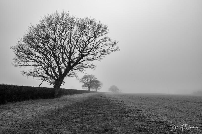 Foggy Hassocks-6913-Edit.jpg