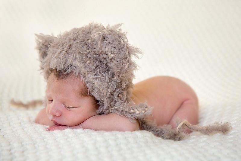 Newborns 201512.jpg