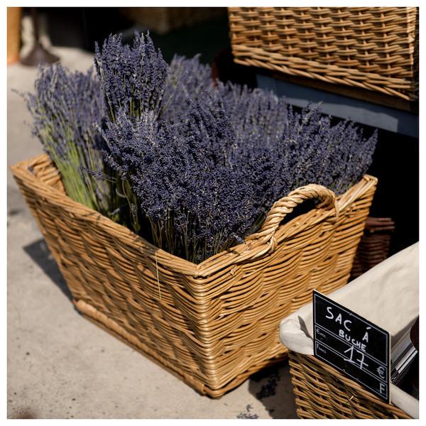 gordes lavender.jpg