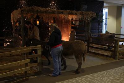 2009-12-23 - Christmas Eve