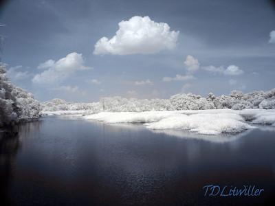 Florida Infrared