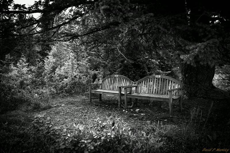 Hidden Benches