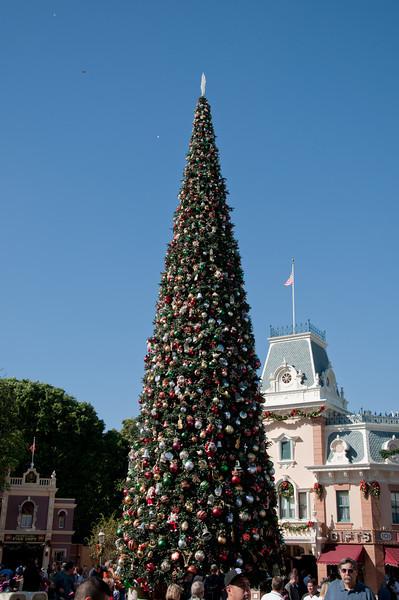 Disneyland Nov 15 2009