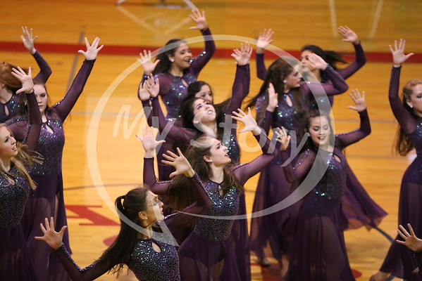 Spring Dance Show Highlights 2016