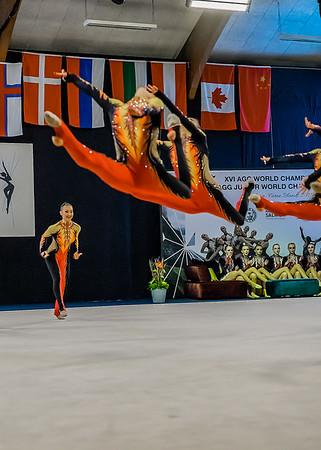World Championships Preliminary 2015