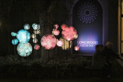 Longwood Lights Sep 2012