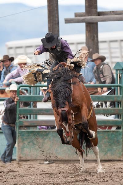 2019 Rodeo B (996 of 1309).jpg