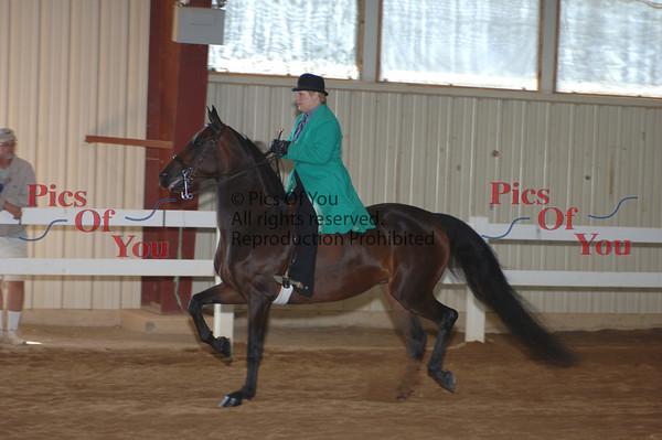 CLASS 026 CLassic Pleasure Saddle Alots