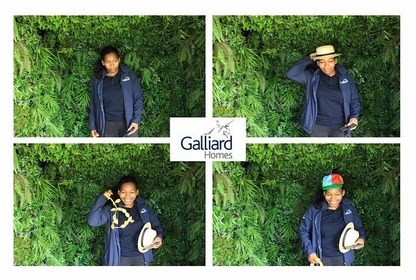 Galliard Tropical Van