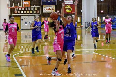 Girls JV Basketball v West Potomac 2/7/20