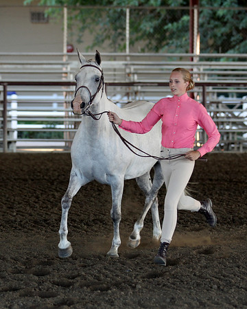 2010 Arabian Horse Community Show Friday