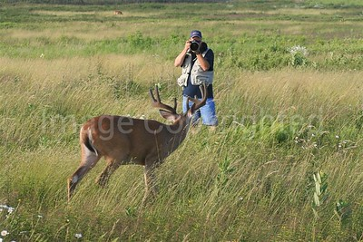 Photos of me in the field