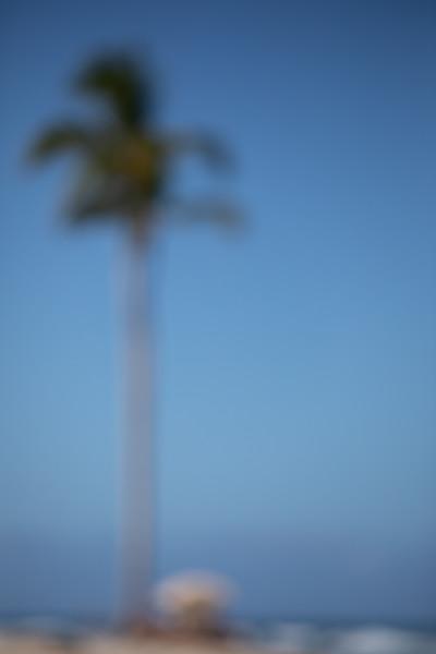 Travel_Hawaii_032020_0119.jpg