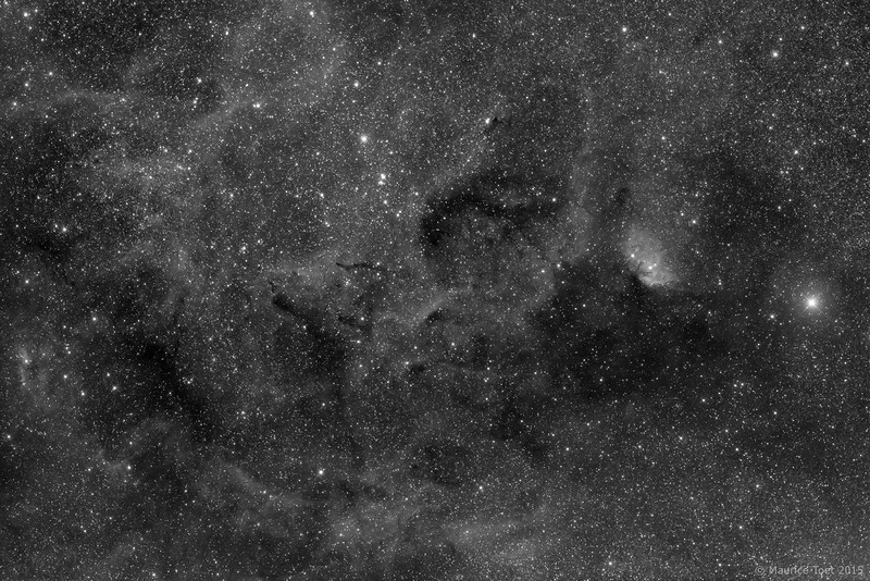 B 144, 146 & 147 and Sh2-101, Tulip Nebula