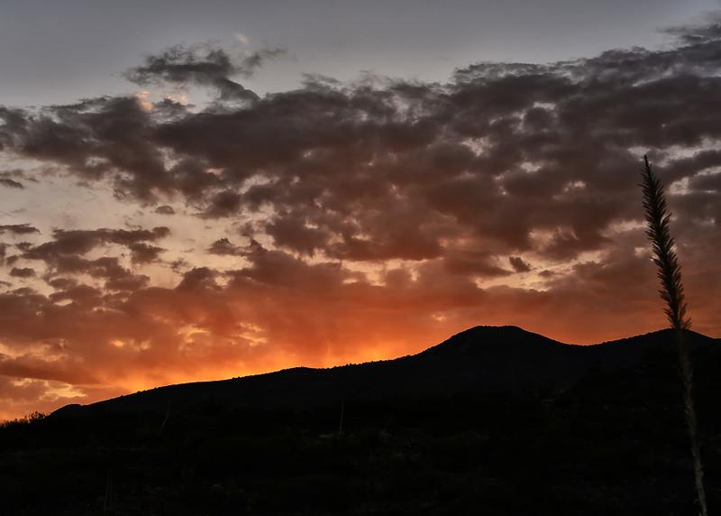 NEA_3309-7x5-Sunrise.jpg